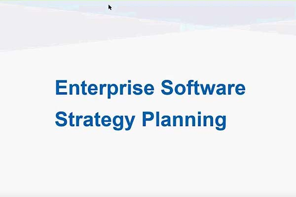 Enterprise Software Strategy Planning